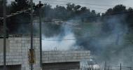 Wielgosz: Gaza. Krwawy pomnik bierności