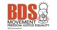 Kampania BDS – Niesamowite rzeczy, które osiągnęliśmy w 2014 roku